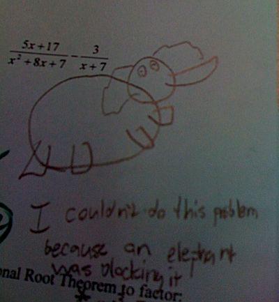 Elephantexcuse